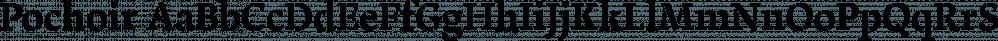Pochoir font family by Yanone