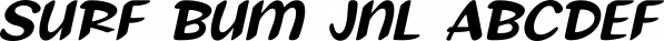 Surf Bum JNL font family by Jeff Levine Fonts