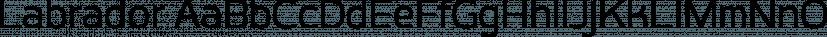 Labrador font family by Typesketchbook