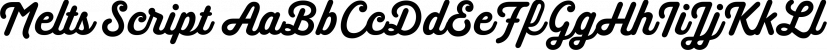 Melts Script font family by Estudio Calderón
