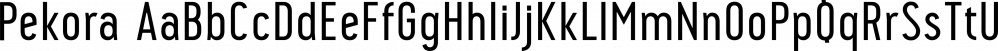 Pekora font family by Typoforge Studio