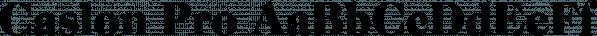 Caslon Pro font family by SoftMaker