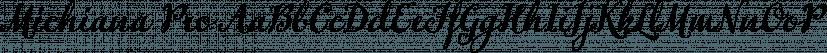 Michiana Pro font family by BluHead Studio