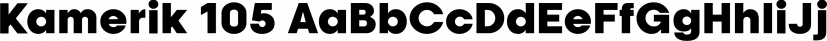 Kamerik 105 font family by Talbot Type