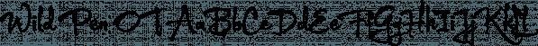 Wild Pen OT font family by Corradine Fonts