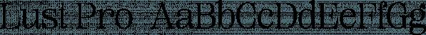 Lust Pro  font family by Positype