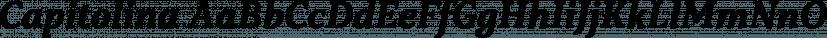 Capitolina font family by Typefolio Digital Foundry
