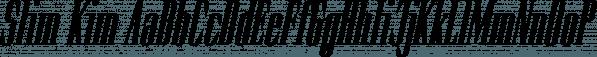 Slim Kim font family by Wiescher-Design