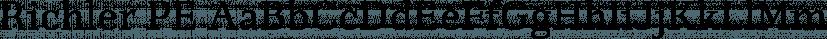 Richler PE font family by Shinntype