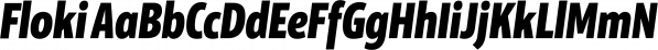 Floki font family by LetterMaker