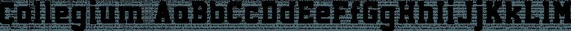 Collegium font family by GRIN3 (Nowak)