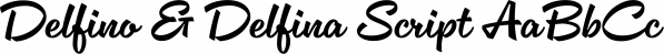 Delfino & Delfina Script font family by Schizotype Fonts