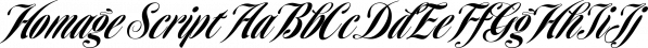 Homage Script font family by GarageFonts