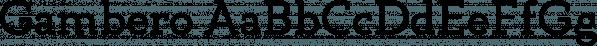 Gambero font family by Typoforge Studio