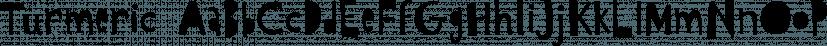 Turmeric font family by Atlantic Fonts