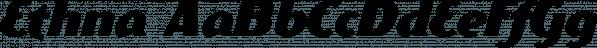 Ethna font family by NREY