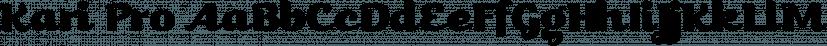Kari Pro font family by Positype