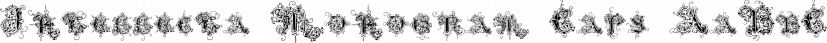 Intellecta Monogram Caps font family by Intellecta Design