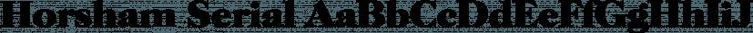 Horsham Serial font family by SoftMaker