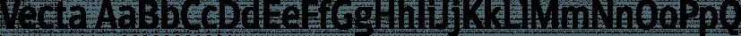 Vecta font family by Wilton Foundry