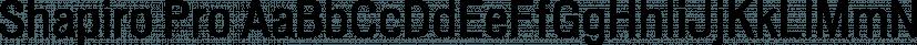 Shapiro Pro font family by OGJ Type Design
