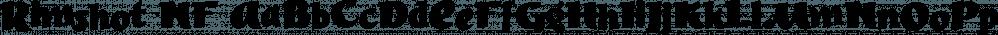 Rimshot NF font family by Nick's Fonts