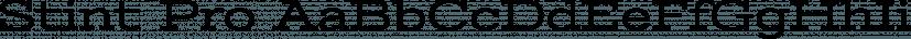 Stint Pro font family by Stiggy & Sands