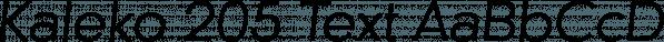 Kaleko 205 Text font family by Talbot Type