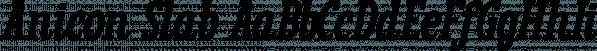 Anicon Slab font family by NREY