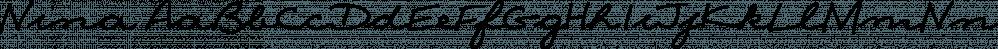 Nina font family by ParaType