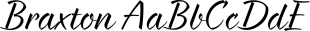 Braxton font family mini