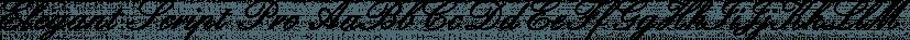 Elegant Script Pro font family by SoftMaker