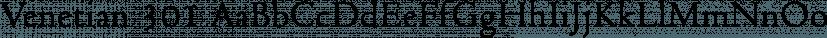 Venetian 301 font family by ParaType
